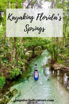 The best springs near Orlando to have fun at this summer! If youre looking for things to do in central Florida consider swimming tubing snorkeling or kayaking at one of these 5 natural springs. - Travel Orlando - Ideas of Travel Orlando Florida Vacation Spots, Places In Florida, Moving To Florida, Visit Florida, Florida Travel, Vacation Ideas, Florida Girl, Greece Vacation, Vacation Places