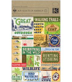 Boy Scout stickers