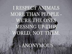 Respect animals                                                       …