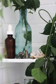 Turning Shower Space into Mini Spa Sanctuary Shower Plant, Mini Spa, Free People Blog, Shabby, Small Bathroom, Bathroom Ideas, Earthy Bathroom, Neutral Bathroom, Bathroom Plants