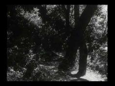Original Daniel Boone Opening (1949-1957)
