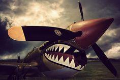 Vintage Aircraft Photographic Print: Curtiss Kittyhawk by David Bracher : - B 17, Ww2 Aircraft, Military Aircraft, Photo Avion, Shark Art, V Max, Pin Up, Ww2 Planes, Nose Art