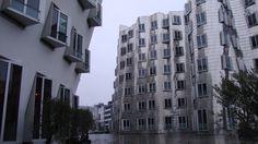 Der Neue Zollhof, Frank Gehry