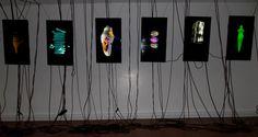 """""""The Transformation of Venus"""" Enlace video https://vimeo.com/79385589 Como continuación de la propuesta: Metamorphoses of The Virtual de Pia Myrvold"""