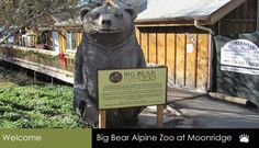 Big Bear Zoo, Big Bear California fun place to take the kids #minitimedreamholiday