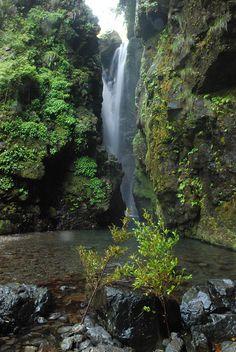轟の滝(徳島) Todoroki Falls, Tokushima, Japan
