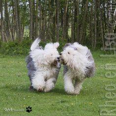 so Happy #rheaenlisa #runfreelisa #lovingmemoriesofourlisa