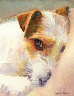 Watercolor painting of a curly coated Jack Russel Terrier by Cynthia Klassen. See CynthiaKlassen.com