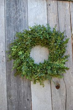 Love this! Boxwood Wreaths that start out green and turn to fall reds and oranges!