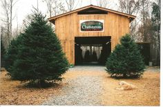 see 1 photo and 1 tip from 16 visitors to spillmans christmas tree farm - Christmas Tree Farm Asheville Nc
