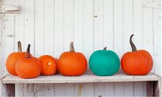 What It Means If You See a Teal Pumpkin This Halloween.... even if you don't do a teal pumpkin homes could still offer an item not food related :) Pumpkin Pictures, Holidays Halloween, Halloween Candy, Baby Halloween, Vintage Halloween, Halloween Pumpkins, Haunted Halloween, Halloween Decorations, Halloween 2015