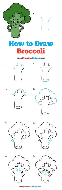Learn to draw broccoli. This step-by-step tutorial makes it easy. Kids and beginners alike can now draw a great looking broccoli. Best Drawing For Kids, Drawing Tutorials For Kids, Drawing Lessons, Drawing Tips, Art Lessons, Drawing Ideas, Drawing Drawing, Fruits Drawing, Food Drawing