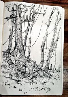 Ian mcque on botanical gardens schizzi, disegno grafico, ide Illustration Sketches, Illustrations, Drawing Sketches, Sketching, Sketchbook Inspiration, Art Sketchbook, Nature Sketch, Ink Pen Drawings, Art Graphique