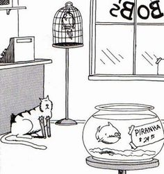 the far side cartoons Far Side Cartoons, Far Side Comics, The Far Side, Gary Larson, Here Kitty Kitty, Cat Lovers, Place Card Holders, Funny, Comedy