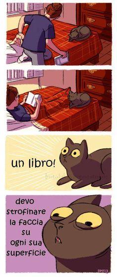 Quando il gatto strofina il muso sulla copertina il libro poi ha un valore aggiunto.