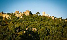 Provence Guide: Menerbes Holiday Rentals, B, Hotels, Restaurants, Travel & Activities