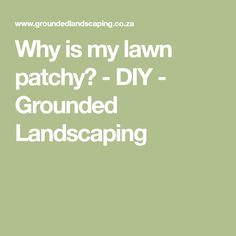 Why is my lawn patchy? - DIY - Grounded Landscaping