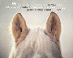 Grace, beauty & fire...