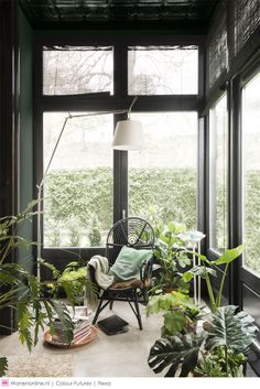 If you are fans of a fresh and colorful interior decor, using indoor plants to decorate your interior can be one of easiest ways to make a home feel more lived-in and relaxed. Adding large indoor p… Home Interior, Interior And Exterior, Interior Design, Small Room Interior, Dark Green Walls, Dark Walls, Sweet Home, Living Spaces, Living Room