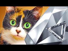 YouTube Slivki Show, Cats, Youtube, Animals, Gatos, Animales, Kitty Cats, Animaux, Animal Memes