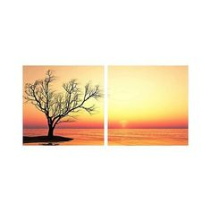 "Set of 2 Blazing Horizon 19 3/4"" Square Canvas Wall Art (7175 RSD) ❤ liked on Polyvore featuring home, home decor, wall art, colorful trees, inspirational home decor, motivational canvas wall art, canvas wall art and photo-print"