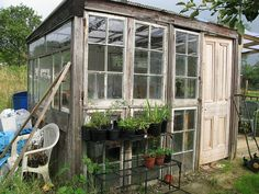 WOW!  A greenhouse made from old wooden windows and door.