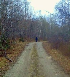 Bigfoot Photos and Reports from Maine | The Crypto Crew