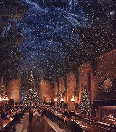 Attention, Harry Potter Fans: There Will Be a Christmas Dinner Inside Hogwarts Great Hall Harry Potter Gif, Natal Do Harry Potter, Harry Potter Navidad, Images Harry Potter, Harry Potter Weihnachten, Wallpaper Harry Potter, Arte Do Harry Potter, Harry Potter Hogwarts, Harry Potter Style