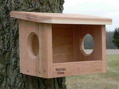 Robin/phoebe nesting box