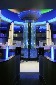 Eat at Coba Cocina in Lexington, KY...It has the coolest jellyfish aquariums as well as delicious food and AMAZING service! Good prices too!