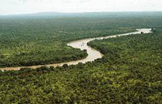 Gambia River! Niokolokoba National Park