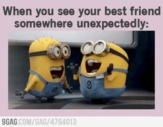 minions, laugh, friends, funni, when you see your best friend