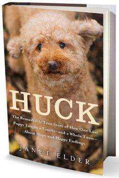 Huck: The Remarkable True Story of How One Lost Puppy Taught a Family—and a Whole Town—About Hope and Happy Endings