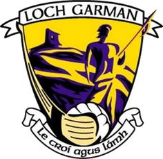 Wexford GAA county crest Irish Pride, Irish Quotes, Semi Final, Button Art, Ireland, Give It To Me, Crests, Paper Flowers, Art Ideas