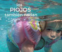 Las albercas es uno de los principales lugares para contagiarse de PIOJOS ya que los piojos pueden sobrevivir en el agua por varios días.