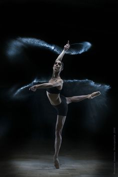 ♪♫ Dance ♪♫ photography Timeless Moves V