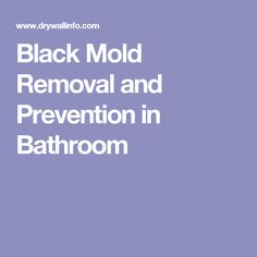 Black Mold Removal and Prevention in Bathroom