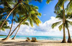 Weiße Sandstrände und Palmen soweit das Auge reicht: Das ist die Dom Rep. Erfahrt ihr die besten Dominikanische Republik Tipps für eine Reise.