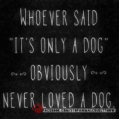 Whoever said its only a dog obviously never loved a dog