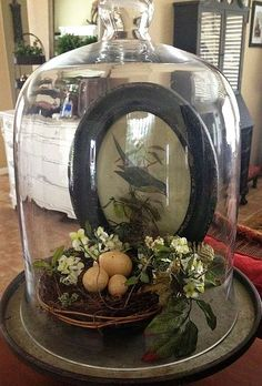 We just got in these awesome galvanized stands, more cloches, nests and spring florals! Country Decor, Farmhouse Decor, Cloche Decor, The Bell Jar, Bell Jars, Deco Boheme, Apothecary Jars, Mason Jars, Decoration Table
