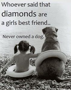 Whoever said that diamonds are a girls best friend - never owned a dog.i