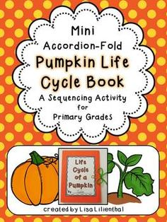 Pumpkin Life Cycle!
