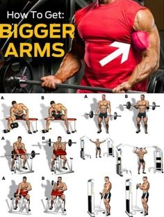 How To Get Bigger Arms Biceps Workout Beast Mode Big Biceps Workout, Forearm Workout, Gym Workout Videos, Workout Guide, Muscle Fitness, Fitness Tips, Health Fitness, Weight Training Workouts, Muscle Building Workouts