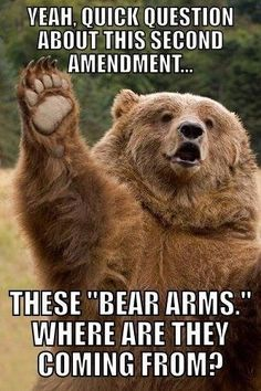 Right To Bear Arms - https://shareitsfunny.com/right-to-bear-arms/ - Funny Pictures on  Share Its Funny  #funnypictures