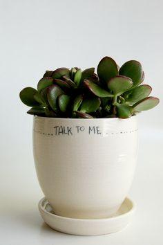 stoneware, tableware, interior design, plants, pottery