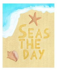 Seas the day.  Etsy - erinjaneshop..