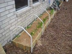 Mittleider Gardening: How To Build A Mini Greenhouse.   .links to many more great videos.