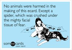 No animals were harmed in the making of this ecard. Except a spider, which was crushed under the mighty facial tissue of fear.