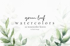 Green Watercolor, Watercolor Leaves, Wreath Watercolor, Web Design, Clipart Design, Hand Embroidery Designs, All Fonts, Green Leaves, Printable Stickers