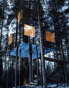 Cet hôtel est situé à Harads en Suède et il propose des chambres perchées dans des arbres en pleine nature avec un design superbe.